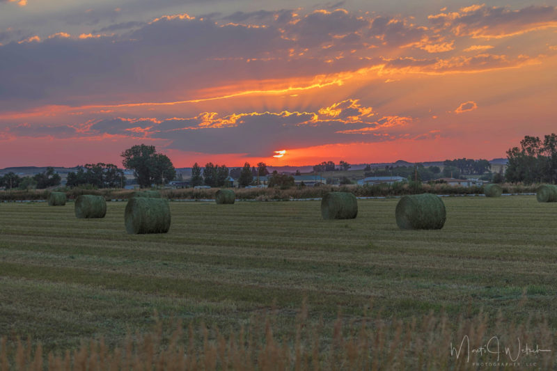 Sunset in a hay field, photo by Monti J. Wetsch